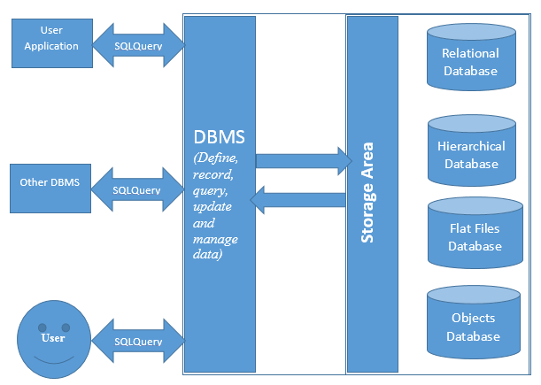 database management systems Database management system are crucial and important links in the creation as well as management of company data find out why.